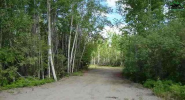 NHN JOHNSON ROAD, SALCHA, Alaska 99714, ,Land,For Sale,JOHNSON ROAD,143631