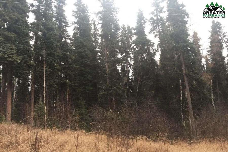 1400 WILLISTON WAY, Fairbanks, Alaska 99709, ,Land,For Sale,WILLISTON WAY,143723