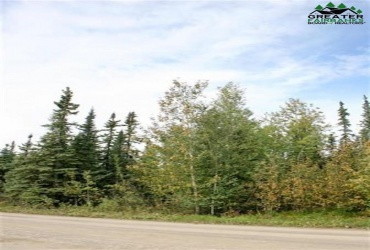 NHN MAVENCAMP CIRCLE, North Pole, Alaska 99705, ,Land,For Sale,MAVENCAMP CIRCLE,143791