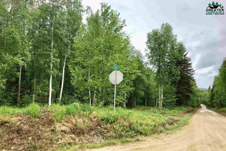 nhn FRIDA WAY, FAIRBANKS, Alaska 99709, ,Land,For Sale,FRIDA WAY,143918