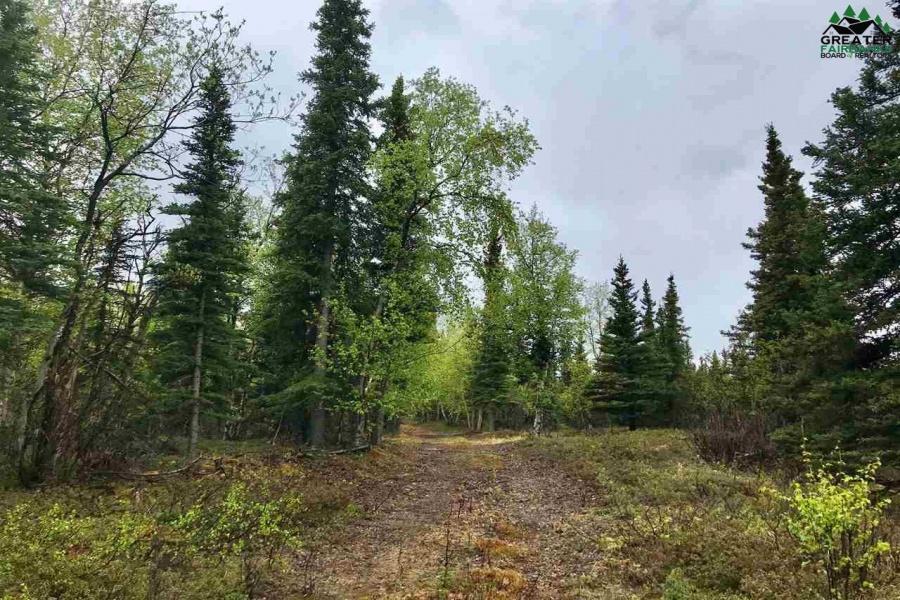 NHN HILLTOP ROAD, HEALY, Alaska 99743, ,Land,For Sale,HILLTOP ROAD,143930