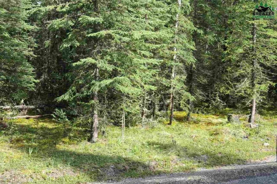 8934 SUNDOG TRAIL, Tok, Alaska 99780, ,Land,For Sale,SUNDOG TRAIL,144098